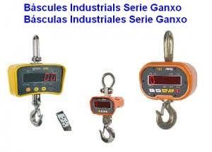 BASCULAS INDUSTRIALES GANCHO
